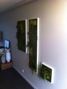 Salon finalisé - Tableaux végétaux