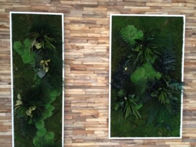 Salon finalisé - Mur en bois